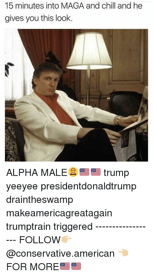 Makeamericagreatagain: 15 minutes into MAGA and chill and he  gives you this look ALPHA MALE😩🇺🇸🇺🇸 trump yeeyee presidentdonaldtrump draintheswamp makeamericagreatagain trumptrain triggered ------------------ FOLLOW👉🏼 @conservative.american 👈🏼 FOR MORE🇺🇸🇺🇸