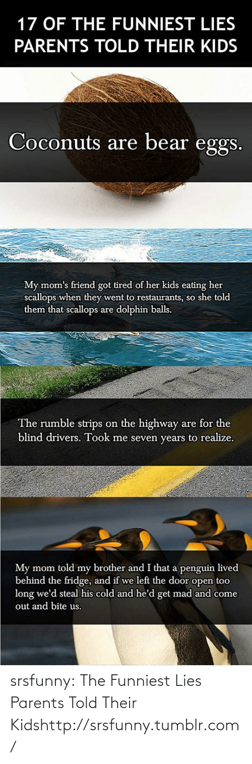 Got Tired: 17 OF THE FUNNIEST LIES  PARENTS TOLD THEIR KIDS  Coconuts are bear eggs.  My mom's friend got tired of her kids eating her  scallops when they went to restaurants, so she told  them that scallops are dolphin balls.  The rumble strips on the highway are for the  blind drivers. Took me seven years to realize.  My mom told my brother and I that a penguin lived  behind the fridge, and if we left the door open too  long we'd steal his cold and he'd get mad and come  out and bite us. srsfunny:  The Funniest Lies Parents Told Their Kidshttp://srsfunny.tumblr.com/