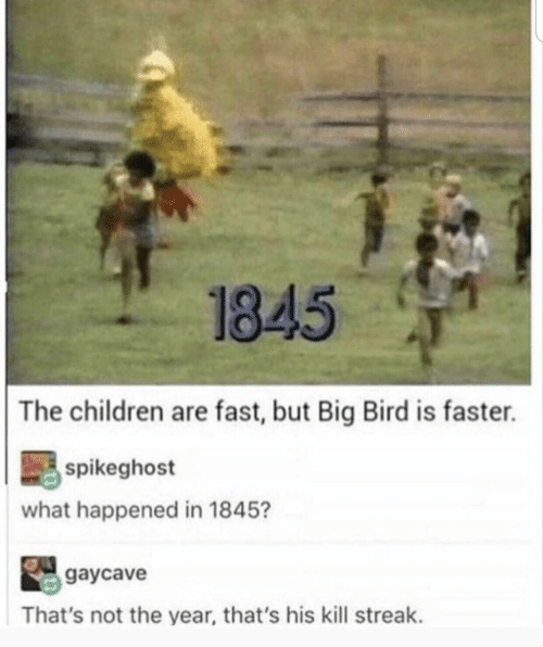Big Bird: 1845  The children are fast, but Big Bird is faster.  spikeghost  what happened in 1845?  gaycave  That's not the year, that's his kill streak.