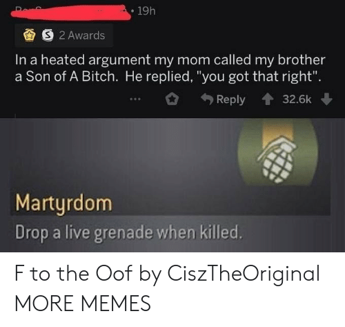 "Drop A: 19h  S 2 Awards  In a heated argument my mom called my brother  a Son of A Bitch. He replied, ""you got that right"".  Reply  32.6k  Martyrdom  Drop a live grenade when killed. F to the Oof by CiszTheOriginal MORE MEMES"