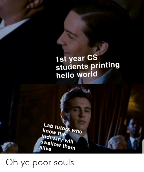 hello world: 1st year CS  students printing  hello world  Lab tutors who  know the  industry will  swallow them  alive Oh ye poor souls