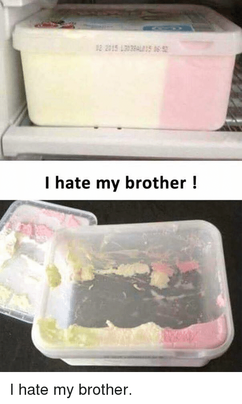 Funny, Brother, and Hate: 2 2015 302AL  I hate my brother! I hate my brother.