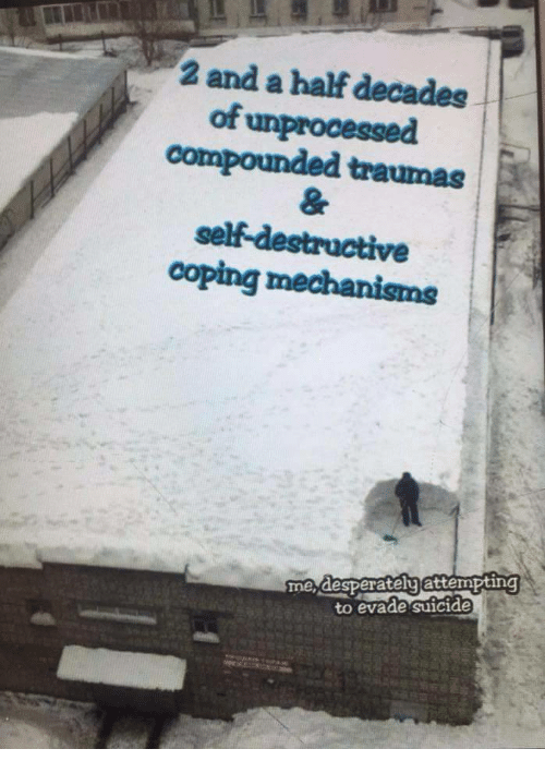 Suicide, Evade, and Self: 2 and a half decades  of unprocessed  compounded traumas  self-destructive  coping mechanisms  me desperatelyattempting  to evade suicide