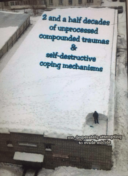 And A Half: 2 and a half decades  of unprocessed  compounded traumas  self-destructive  coping mechanisms  me desperatelyattempting  to evade suicide