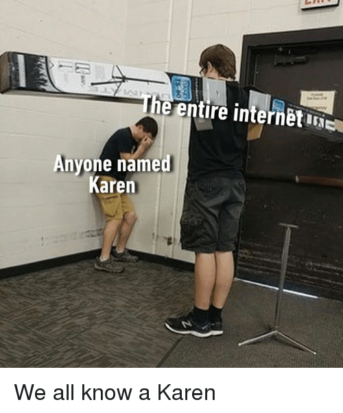 Dank, 🤖, and All: 2  e entire internetiNE  Anyone named  Karen We all know a Karen