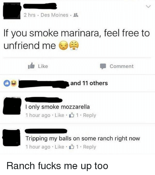 Funny, Free, and Des Moines: 2 hrs . Des Moines .  If you smoke marinara, feel free to  unfriend me  I Like  Comment  and 11 others  l only smoke mozzarella  1 hour ago . Like .山1 . Reply  Tripping my balls on some ranch right now  1 hour ago . Like- 1 . Reply Ranch fucks me up too