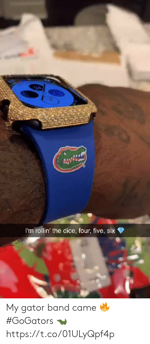 Dice: 2  I'm rollin' the dice, four, five, six My gator band came 🔥 #GoGators 🐊 https://t.co/01ULyQpf4p