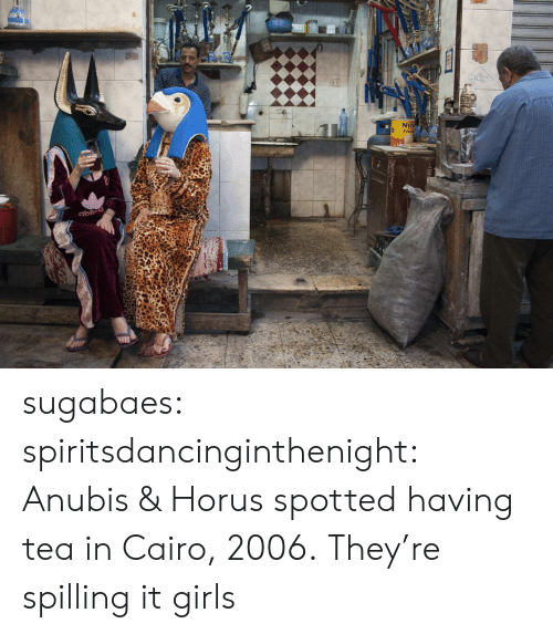 Girls, Tumblr, and Blog: 2  NEI sugabaes: spiritsdancinginthenight:  Anubis & Horus spotted having tea in Cairo, 2006.    They're spilling it girls