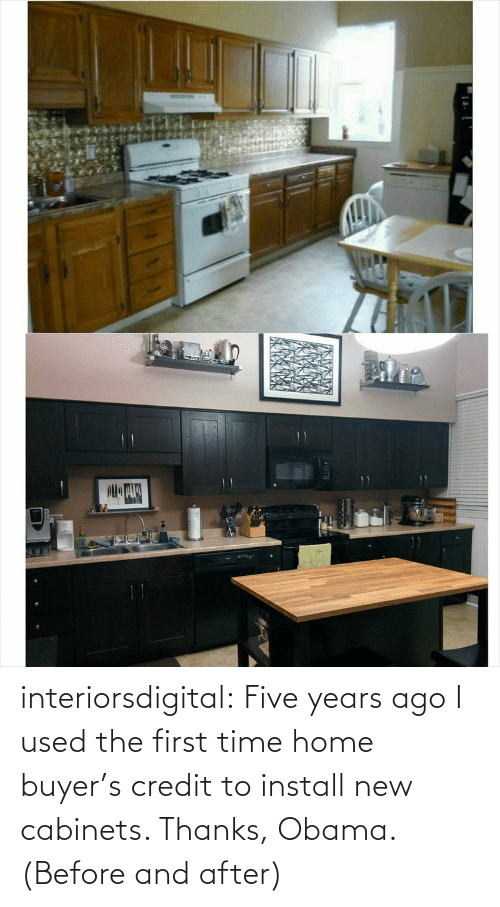 Buyer: 20 00 interiorsdigital:  Five years ago I used the first time home buyer's credit to install new cabinets. Thanks, Obama. (Before and after)