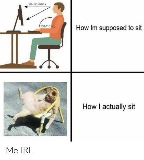 Irl, Me IRL, and How: 20-30 inches  100-110 deg  How Im supposed to sit  How I actually sit Me IRL