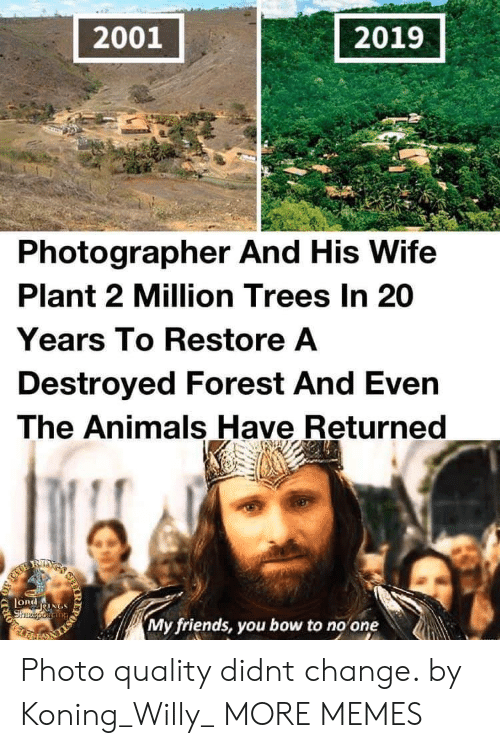 my friends you bow to no one: 2001  2019  Photographer And His Wife  Plant 2 Million Trees In 20  Years To Restore A  Destroyed Forest And Even  The Animals Have Returned  RIXS  LORdNGS  Shzeporiang  My friends, you bow to no one  IR  203 Photo quality didnt change. by Koning_Willy_ MORE MEMES