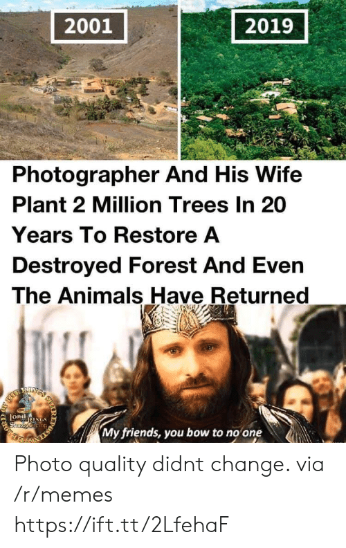 my friends you bow to no one: 2001  2019  Photographer And His Wife  Plant 2 Million Trees In 20  Years To Restore A  Destroyed Forest And Even  The Animals Have Returned  RIXS  LORdNGS  Shzeporiang  My friends, you bow to no one  IR  203 Photo quality didnt change. via /r/memes https://ift.tt/2LfehaF