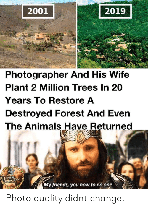 bow: 2001  2019  Photographer And His Wife  Plant 2 Million Trees In 20  Years To Restore A  Destroyed Forest And Even  The Animals Have Returned  RIXS  LORdNGS  Shzeporiang  My friends, you bow to no one  IR  203 Photo quality didnt change.