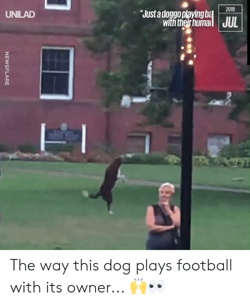 Dank, Football, and 🤖: 2019  Justadoggoplaying ba  with ther humail JUL  UNILAD  NEWSFLARE The way this dog plays football with its owner... 🙌👀