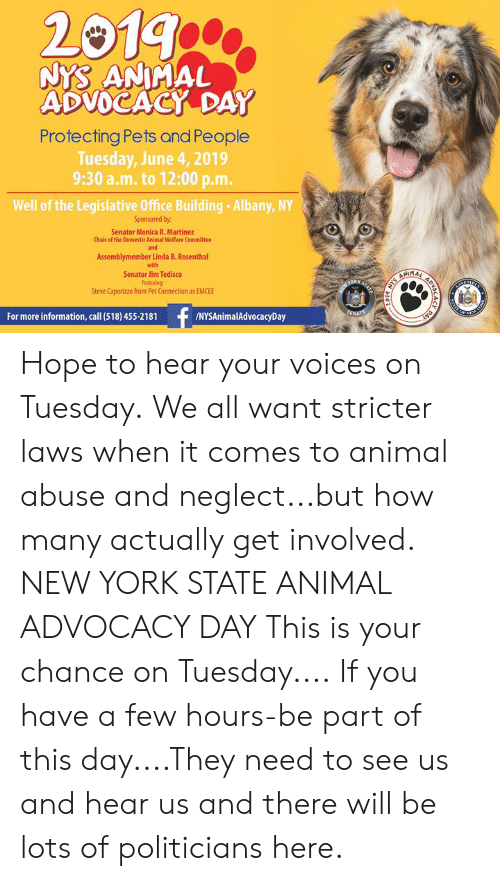 Memes, New York, and Animal: 20199  NYS ANIMAL  ADVOCACY DAY  Protecting Pets and People  Tuesday, June 4, 2019  9:30 a.m. to 12:00 p.m.  Well of the Legislative Office Building Albany, NY  Sponsored by:  Senator Monica R. Martinez  Chair of the Domestic Animal Welfare Committee  and  Assemblymember Linda B. Rosenthal  with  ANIMA  Senator Jim Tedisco  Featuring  Steve Caporizzo from Pet Connection as EMCEE  STATE  NYS  MEW YORK:  f  SENATE  /NYSAnimalAdvocacyDay  For more information, call (518) 455-2181  ATE A  APV  bCACY  DVD Hope to hear your voices on Tuesday. We all want stricter laws when it comes to animal abuse and neglect...but how many actually get involved.  NEW YORK STATE ANIMAL ADVOCACY DAY  This is your chance on Tuesday.... If you have a few hours-be part of this day....They need to see us and hear us and there will be lots of politicians here.