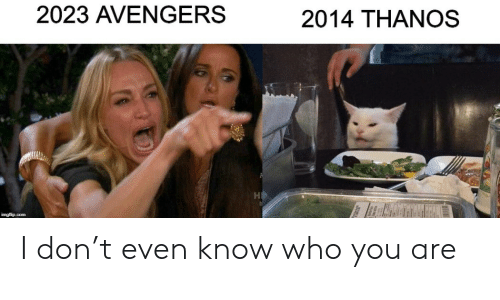 who you are: 2023 AVENGERS  2014 THANOS  imgflip.com I don't even know who you are