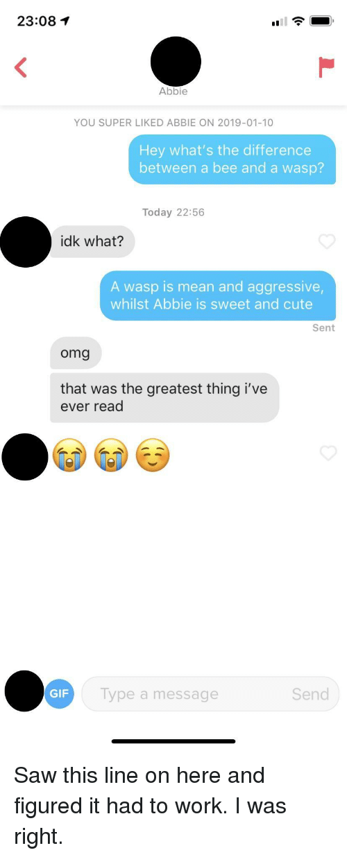 wasp: 23:08  Abbie  YOU SUPER LIKED ABBIE ON 2019-01-10  Hey what's the difference  between a bee and a wasp?  Today 22:56  idk what?  A wasp is mean and aggressive  whilst Abbie is sweet and cute  Sent  omg  that was the greatest thing i've  ever read  GIF  Type a message  Send Saw this line on here and figured it had to work. I was right.
