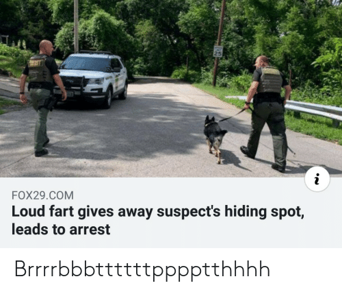 Com, Fart, and Arrest: 25  i  FOX29.COM  Loud fart gives away suspect's hiding spot,  leads to arrest Brrrrbbbttttttpppptthhhh