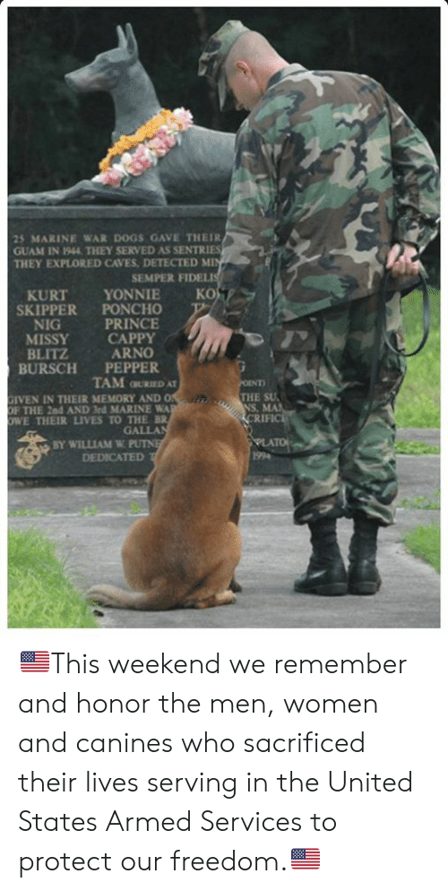 Iven: 25 MARINE WAR DOGS GAVE THEIR  GUAM IN 1944 THEY SERVED AS SENTRIES  THEY EXPLORED CAVES DETECTED MI  SEMPER FIDEL  KURT YONNIE KO  SKIPPER PONCHO  NIG  MISSY CAPPY  BLITZ  BURSCH PEPPER  PRINCE  ARNO  TAM GURIED AT  THE SU  IVEN IN THEIR MEMORY AND O  THE 2nd AND 3rd MARINE WA  WE THEIR LIVES TO THE BR  GALLA  BY WILLIAM W PUTN  DEDICATED  RIF 🇺🇸This weekend we remember and honor the men, women and canines who sacrificed their lives serving in the United States Armed Services to protect our freedom.🇺🇸