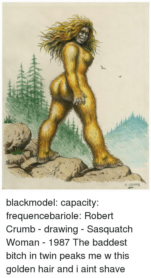 Crumb: 25  R. CRUMB  @987 blackmodel:  capacity:  frequencebariole:  Robert Crumb - drawing - Sasquatch Woman - 1987  The baddest bitch in twin peaks    me w this golden hair and i aint shave