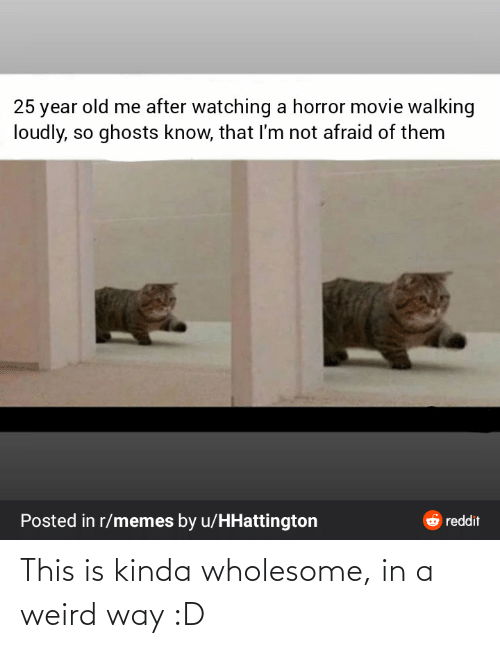 horror: 25 year old me after watching a horror movie walking  loudly, so ghosts know, that I'm not afraid of them  Posted in r/memes by u/HHattington  6 reddit This is kinda wholesome, in a weird way :D