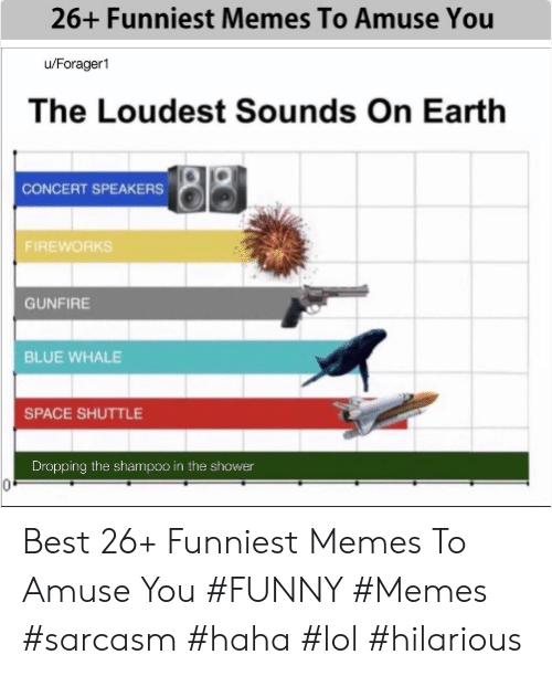 funniest memes: 26+ Funniest Memes To Amuse You  u/Forager1  The Loudest Sounds On Earth  CONCERT SPEAKERS  FIREWORKS  GUNFIRE  BLUE WHALE  SPACE SHUTTLE  Dropping the shampoo in the shower Best 26+ Funniest Memes To Amuse You #FUNNY #Memes #sarcasm #haha #lol #hilarious