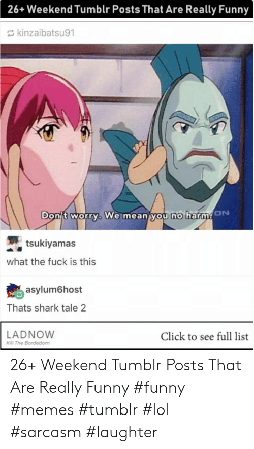 Funny Memes Tumblr: 26+ Weekend Tumblr Posts That Are Really Funny  kinzaibatsu91  Dont worry, We mean you no b  tsukiyamas  what the fuck is this  asylum6host  Thats shark tale 2  LADNOW  Click to see full list  Kill The Bordedom 26+ Weekend Tumblr Posts That Are Really Funny #funny #memes #tumblr #lol #sarcasm #laughter
