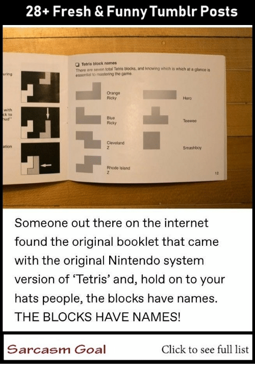 Click, Fresh, and Funny: 28+ Fresh & Funny Tumblr Posts  Tetris block names  There are seven total Tetris blocks, and knowing which is which at a glanco is  essential to mastering the game  ring  Orange  Ricky  Hero  with  k to  ud  Blue  Ricky  Teewoo  Cleveland  ation  Smashboy  Rhode Islanıd  12  Someone out there on the internet  found the original booklet that came  with the original Nintendo system  version of Tetris' and, hold on to your  hats people, the blocks have names.  THE BLOCKS HAVE NAMES!  Sarcasm Goal  Click to see full list