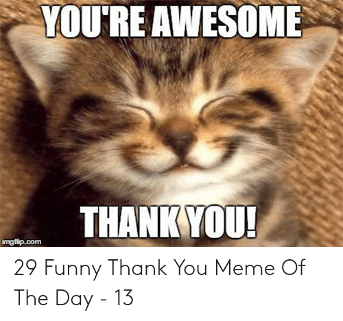Thank You Meme: 29 Funny Thank You Meme Of The Day - 13