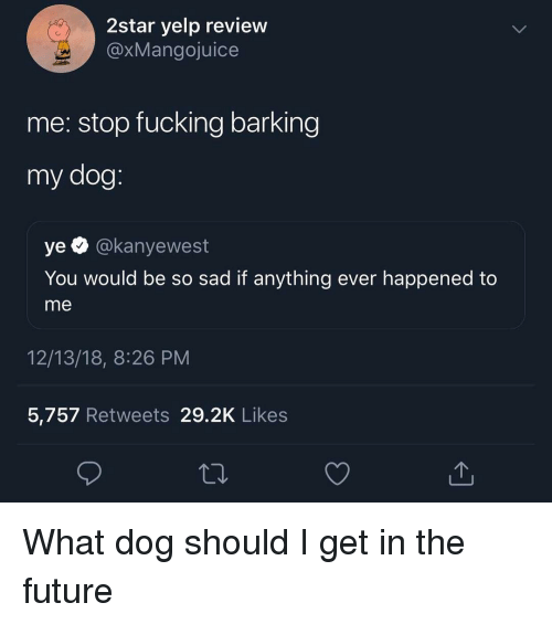 Fucking, Future, and Memes: 2star yelp review  @xMangojuice  me: stop fucking barking  my dog  ye @kanyewest  You would be so sad if anything ever happened to  me  12/13/18, 8:26 PM  5,757 Retweets 29.2K Likes What dog should I get in the future