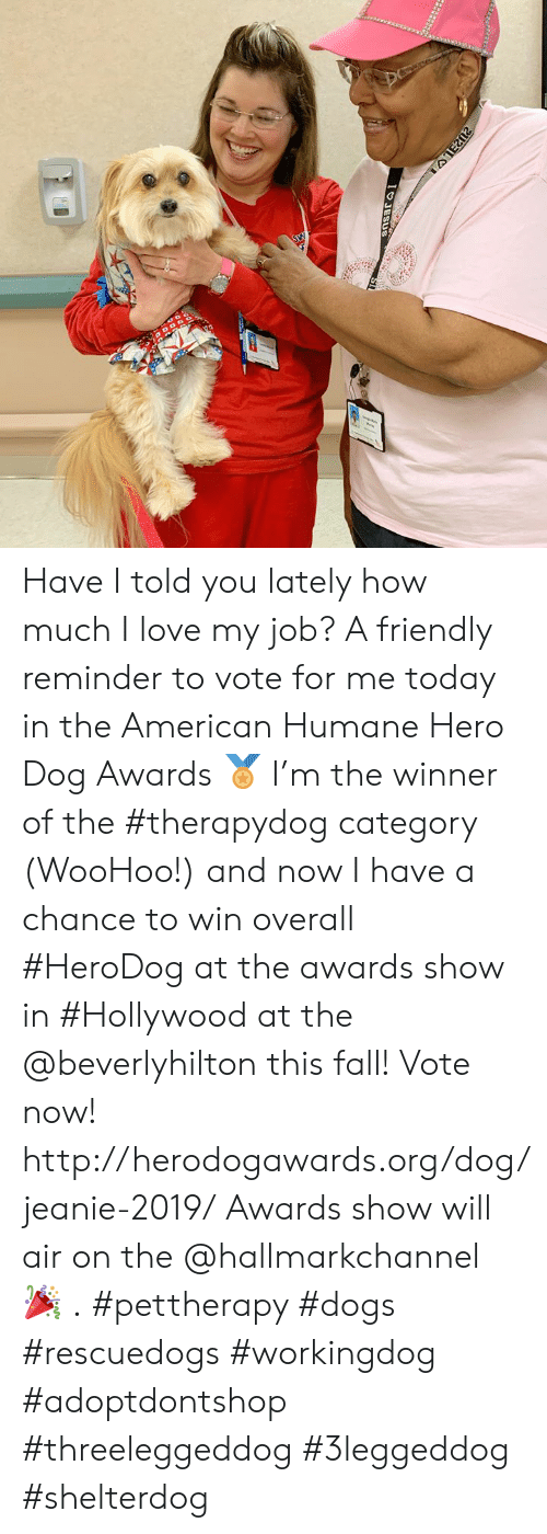 Hallmarkchannel: 2U2LS  IO JESUS  1at Have I told you lately how much I love my job? A friendly reminder to vote for me today in the American Humane Hero Dog Awards 🏅 I'm the winner of the #therapydog category (WooHoo!) and now I have a chance to win overall #HeroDog at the awards show in #Hollywood at the @beverlyhilton this fall! Vote now! http://herodogawards.org/dog/jeanie-2019/ Awards show will air on the @hallmarkchannel 🎉 . #pettherapy #dogs  #rescuedogs #workingdog #adoptdontshop    #threeleggeddog #3leggeddog #shelterdog