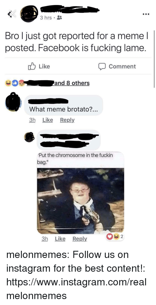 "Facebook, Fucking, and Instagram: 3 hrs  Bro l just got reported for a meme l  posted. Facebook is fucking lame  Like  Comment  What meme brotato?  3h Like Reply  Put the chromosome in the fuckin  bag.""  Il  3h Like Reply melonmemes:  Follow us on instagram for the best content!: https://www.instagram.com/realmelonmemes"
