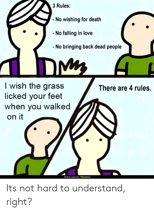 Bringing: 3 Rules:  No wishing for death  No falling in love  No bringing back dead people  I wish the grass  licked your feet  you walked  There are 4 rules.  when  on it  Shitbob_asspants Memedroid Its not hard to understand, right?