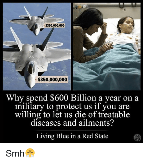 Blue In: $350,000,000  $350,000,000  Why spend $600 Billion a year on a  military to protect us if you are  willing to let us die of treatable  diseases and ailments?  Living Blue in a Red State Smh😤
