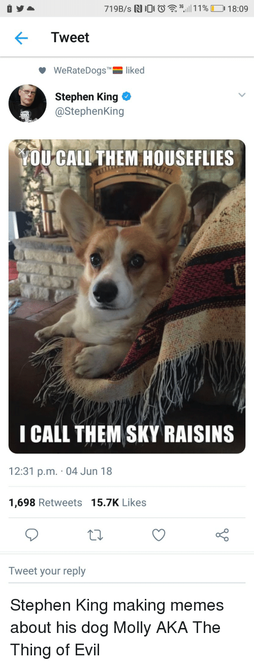 """Memes, Molly, and Stephen: 3G  Tweet  WeRateDogs""""-liked  Stephen King  @StephenKing  OU CALL THEM HOUSEFLIES  I CALL THEM SKY RAISINS  12:31 p.m. 04 Jun 18  1,698 Retweets 15.7K Likes  Tweet your reply <p>Stephen King making memes about his dog Molly AKA The Thing of Evil</p>"""