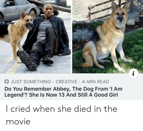 I Am Legend, Girl, and Good: 4 JUST SOMETHING CREATIVE 4-MIN READ  Do You Remember Abbey, The Dog From 'I Am  Legend'? She Is Now 13 And Still A Good Girl I cried when she died in the movie