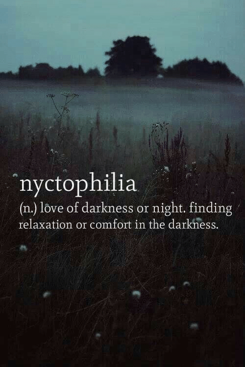 the darkness: 4%  nyctophilia  (n.) love of darkness or night. finding  relaxation or comfort in the darkness.