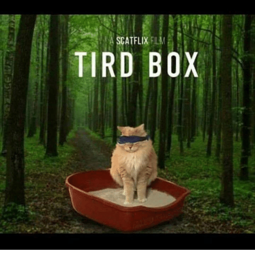 Memes, Film, and 🤖: 4 SCATFLIX FILM  TIRD BOX