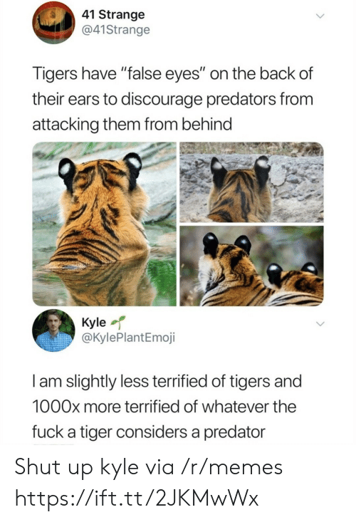 "ears: 41 Strange  @41Strange  Tigers have ""false eyes"" on the back of  their ears to discourage predators from  attacking them from behind  Kyle  @KylePlantEmoji  I am slightly less terrified of tigers and  1000x more terrified of whatever the  fuck a tiger considers a predator Shut up kyle via /r/memes https://ift.tt/2JKMwWx"