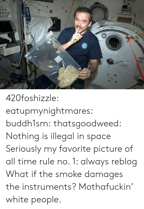 Tumblr, White People, and Blog: 420foshizzle: eatupmynightmares:  buddh1sm:  thatsgoodweed:  Nothing is illegal in space  Seriously my favorite picture of all time  rule no. 1: always reblog  What if the smoke damages the instruments? Mothafuckin' white people.