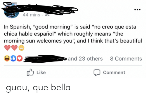 "bella: 44 mins  In Spanish, ""good morning"" is said ""no creo que esta  chica hable español"" which roughly means ""the  morning sun welcomes you"", and I think that's beautiful  and 23 others  8 Comments  Like  Comment guau, que bella"