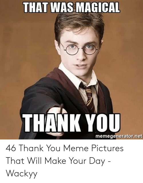 Thank You Meme: 46 Thank You Meme Pictures That Will Make Your Day - Wackyy