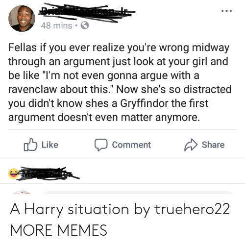 """Commenter: 48 mins  Fellas if you ever realize you're wrong midway  through an argument just look at your girl a  be like """"T'm not even gonna argue witha  ravenclaw about this."""" Now she's so distracted  you didn't know shes a Gryffindor the first  argument doesn't even matter anymore.  Like  Comment  Share A Harry situation by truehero22 MORE MEMES"""