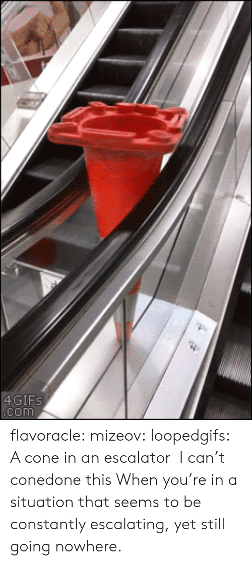 Escalator: 4GIF  COM flavoracle: mizeov:   loopedgifs: A cone in an escalator  I can't conedone this    When you're in a situation that seems to be constantly escalating, yet still going nowhere.