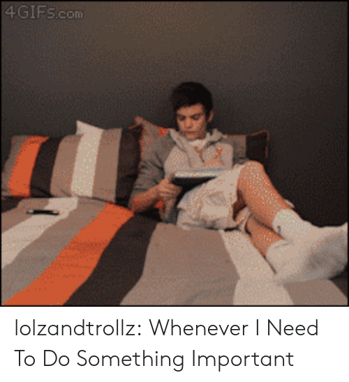 Tumblr, Blog, and Http: 4GIFS.com lolzandtrollz:  Whenever I Need To Do Something Important