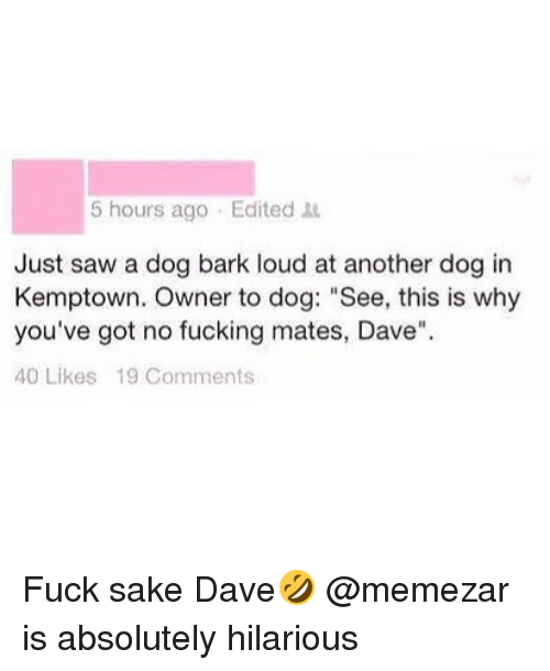 "Louding: 5 hours ago Edited  Just saw a dog bark loud at another dog in  Kemptown. Owner to dog: ""See, this is why  you've got no fucking mates, Dave""  40 Likes 19 Comments Fuck sake Dave🤣 @memezar is absolutely hilarious"