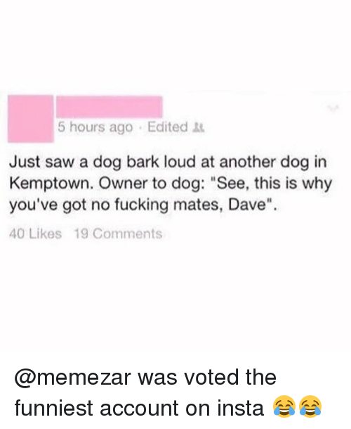 "Louding: 5 hours ago Edited  Just saw a dog bark loud at another dog in  Kemptown. Owner to dog: ""See, this is why  you've got no fucking mates, Dave""  40 Likes 19 Comments @memezar was voted the funniest account on insta 😂😂"