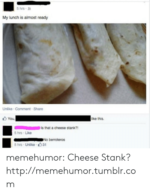 Tumblr, Blog, and Http: 5 hrs  My lunch is almost ready  Unlike Comment Share  You  like this.  Is that a cheese stank?!  5 hrs Like  No berroteros  5 hrs Unlike 31 memehumor:  Cheese Stank?http://memehumor.tumblr.com