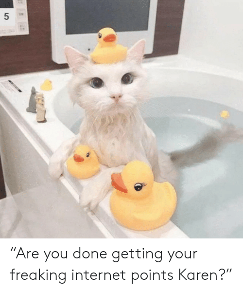 """You Done: 5  LO """"Are you done getting your freaking internet points Karen?"""""""
