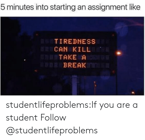 Tumblr, Blog, and Break: 5 minutes into starting an assignment like  TIREDNESS  CAN KILL  TAKE A  BREAK studentlifeproblems:If you are a student Follow @studentlifeproblems​